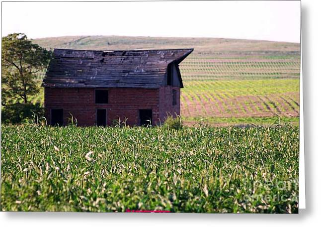 Hay Bales Greeting Cards - THE OLD RED BARN on corner of 250th and Ute Roads Greeting Card by PainterArtist FIN