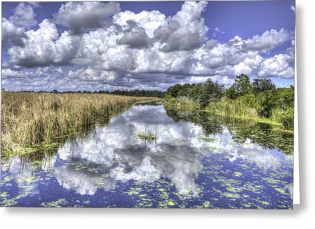 Charleston Greeting Cards - The Old Rice Fields Greeting Card by Walt  Baker