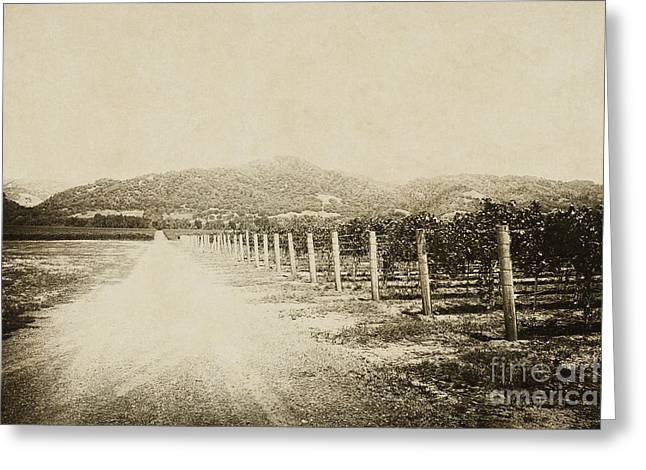 Gravel Road Greeting Cards - The Old Road Greeting Card by Margie Hurwich