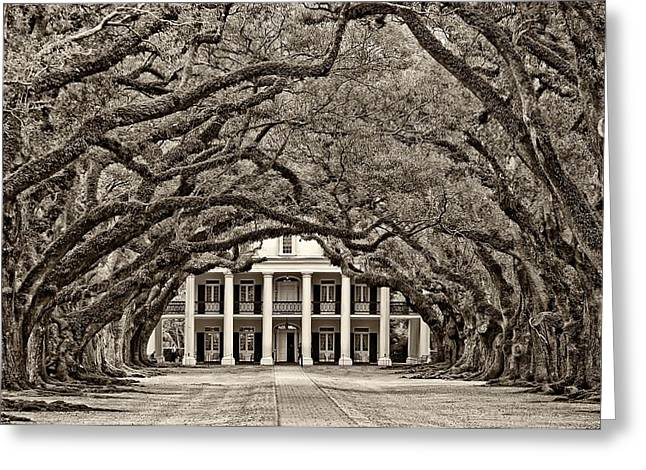 The South Photographs Greeting Cards - The Old South sepia Greeting Card by Steve Harrington