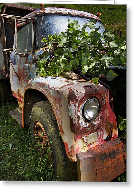 Franklin Farm Greeting Cards - The Old Truck Greeting Card by Debra and Dave Vanderlaan