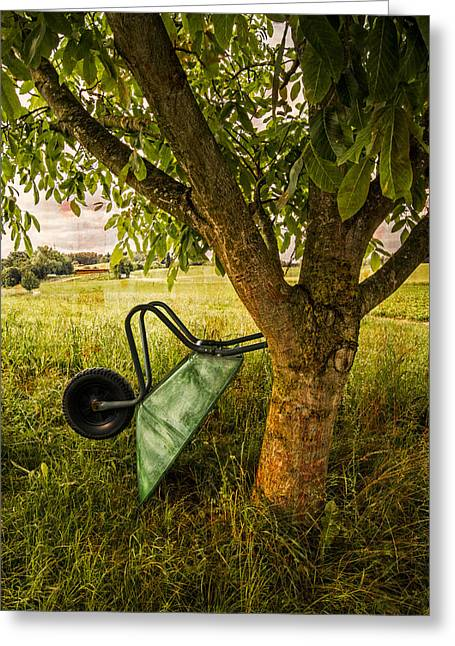 Fruit Tree Art Greeting Cards - The Old Wheelbarrow Greeting Card by Debra and Dave Vanderlaan