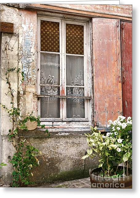 Planter Greeting Cards - The Old Window with the Cats on the Curtains Greeting Card by Olivier Le Queinec