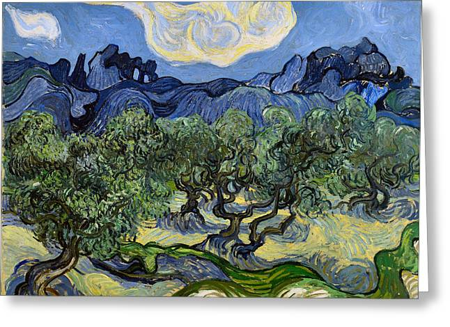 Famous Artist Greeting Cards - The Olive Tree Greeting Card by Vincent Van Gogh