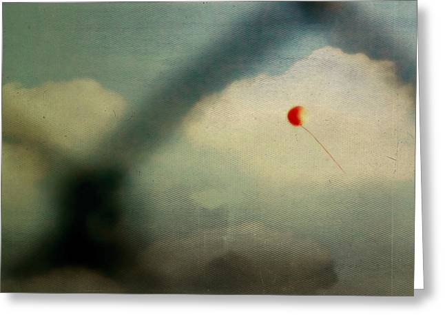The One That Got Away Greeting Card by Trish Mistric