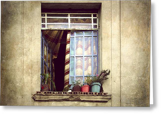 The Open Window Greeting Card by Julie Palencia