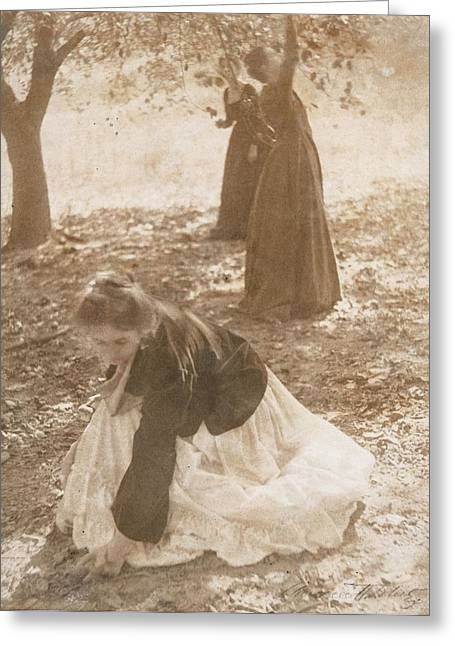 Picking Greeting Cards - The Orchard, 1902 Vintage Platinum Print Greeting Card by Clarence Henry White