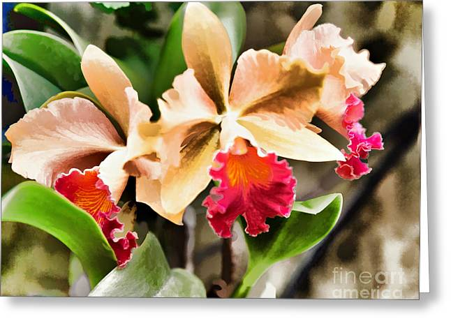 Wacom Tablet Greeting Cards - The Orchid Greeting Card by G Sugal