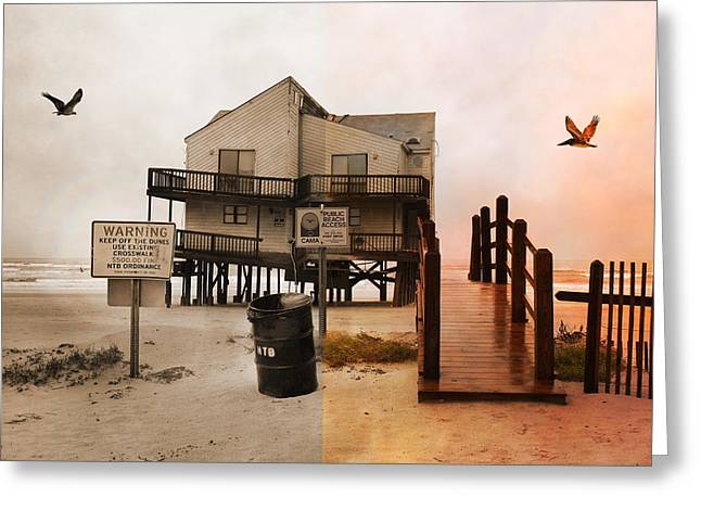 Topsail Island Photographs Greeting Cards - The Osprey and the Pelican Greeting Card by Betsy A  Cutler