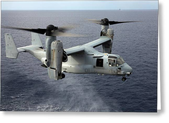 Mv Greeting Cards - The Osprey  Greeting Card by Mountain Dreams