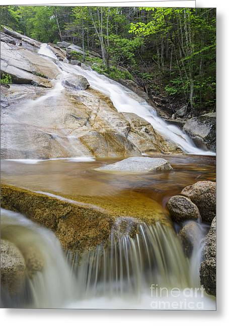 North Fork Greeting Cards - The Other Pitcher Falls - Lincoln New Hampshire Greeting Card by Erin Paul Donovan