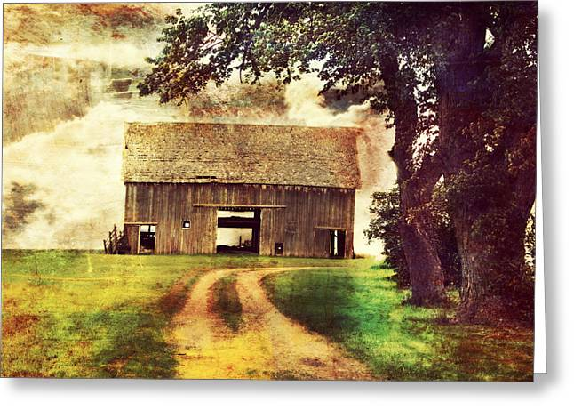 Rural Setting Greeting Cards - The Other Side Greeting Card by Julie Hamilton