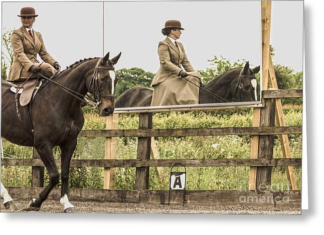 Sidesaddle Greeting Cards - The other side of the saddle Greeting Card by Linsey Williams