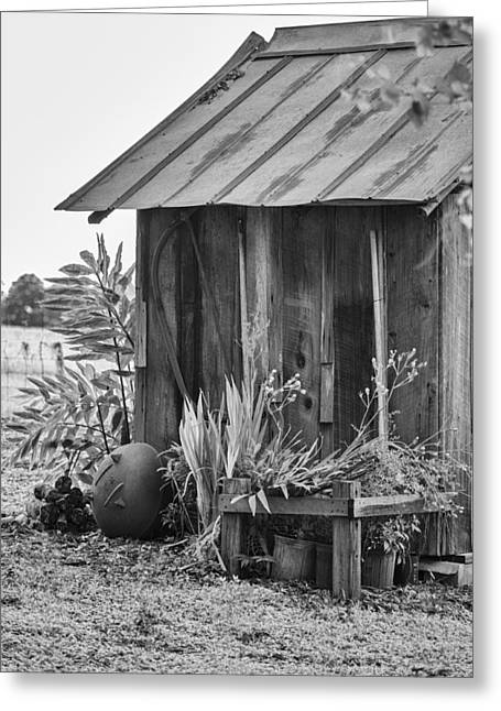 Antique Outhouse Greeting Cards - The Outhouse BW Greeting Card by Carolyn Marshall