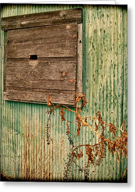 Bluish Green Greeting Cards - The Outside Greeting Card by Off The Beaten Path Photography - Andrew Alexander