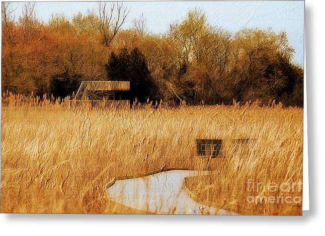 Marshes Digital Greeting Cards - The Overlook Greeting Card by Lois Bryan