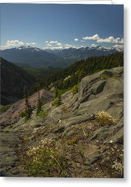 Backpacking Greeting Cards - The Overlook near Garibaldi Greeting Card by Aaron S Bedell