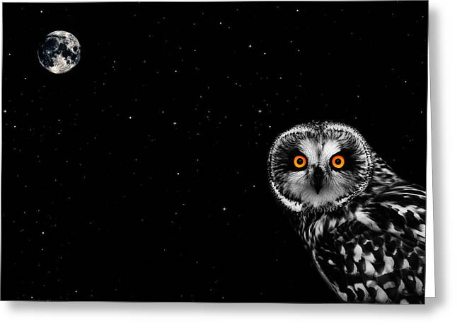Birds Moon Greeting Cards - The Owl and the Moon Greeting Card by Mark Rogan