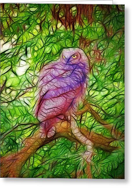 Drawings Of Barns Greeting Cards - The Owl Greeting Card by Steve McKinzie