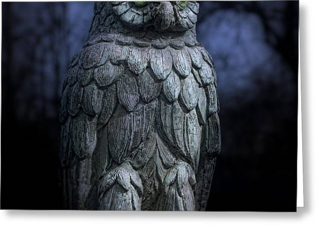 The Owl Greeting Card by Tom Mc Nemar