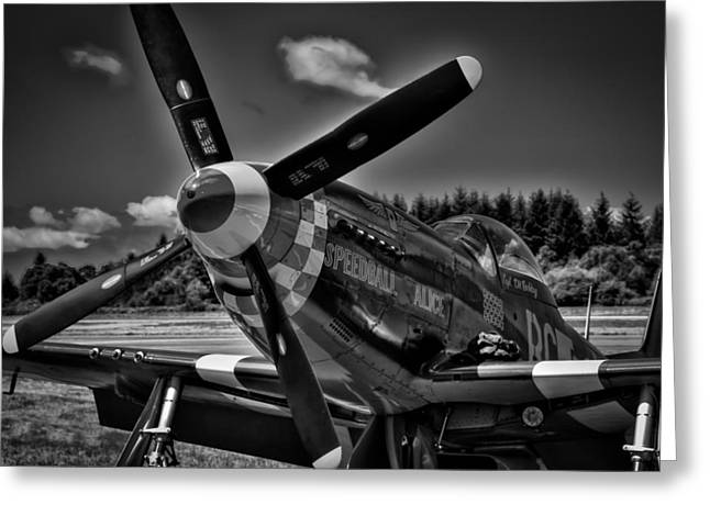 The P-51 Speedball Alice Mustang Greeting Card by David Patterson