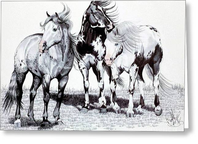 Horse Drawing Greeting Cards - The Paints of Sleeping Wheel Ranch Greeting Card by Cheryl Poland