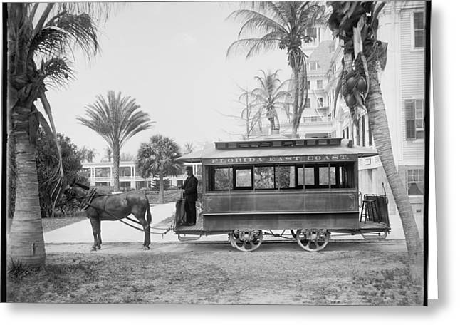 Horse-drawn Digital Greeting Cards - The Palm Beach Trolley Greeting Card by Digital Reproductions
