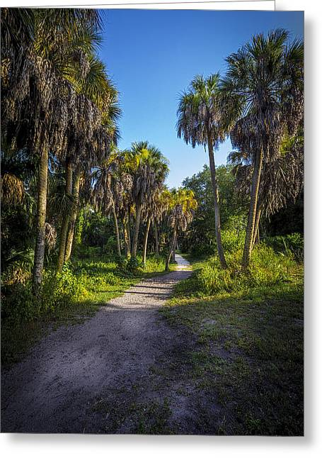 The Palm Trail Greeting Card by Marvin Spates