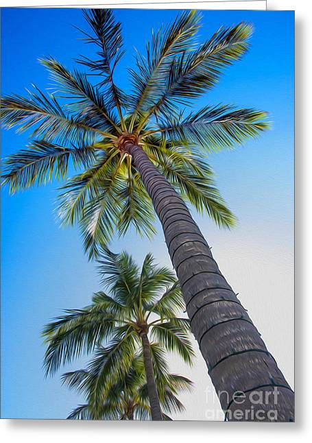 Boca Greeting Cards - The Palms Greeting Card by Jon Neidert