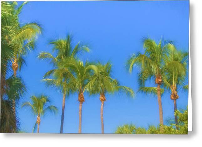 Florida House Greeting Cards - The Palms Greeting Card by Kim Hojnacki