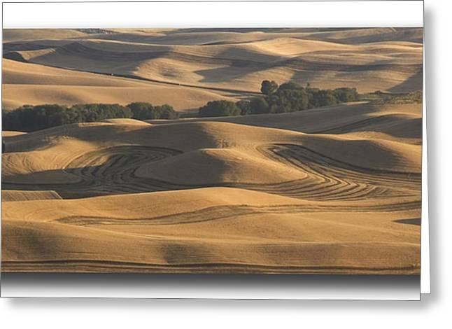Contour Plowing Greeting Cards - Harvest Hills Greeting Card by Latah Trail Foundation