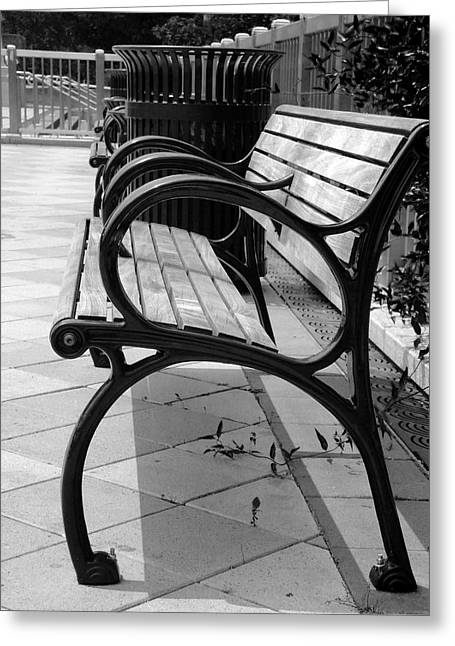 Park Benches Greeting Cards - The Park Greeting Card by Brandon Addis