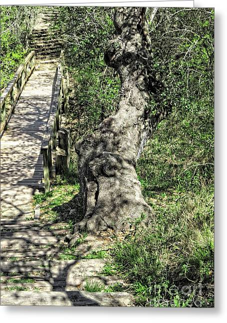 Wooden Stairs Greeting Cards - the Passageway Greeting Card by Ella Kaye Dickey