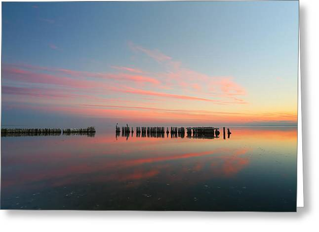 California Art Greeting Cards - The Pastel Sea Greeting Card by Larry Marshall