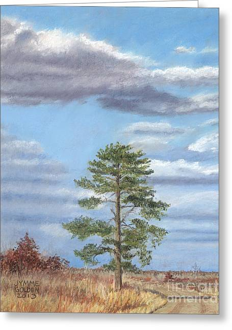 Wildlife Refuge. Paintings Greeting Cards - The Path and The Pine Greeting Card by Jymme Golden
