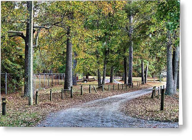 The Path Greeting Card by Carolyn Ricks