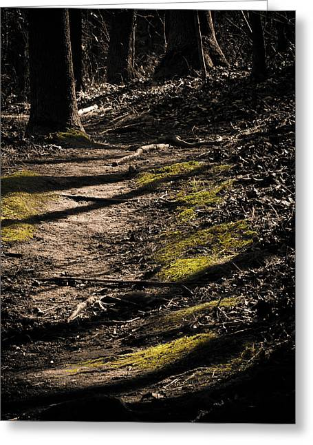 Moss Green Greeting Cards - The Path Greeting Card by Jessica Brawley