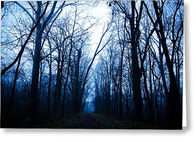 The Path Greeting Card by Off The Beaten Path Photography - Andrew Alexander