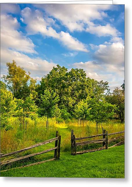 Split Rail Fence Greeting Cards - The Path Greeting Card by Steve Harrington