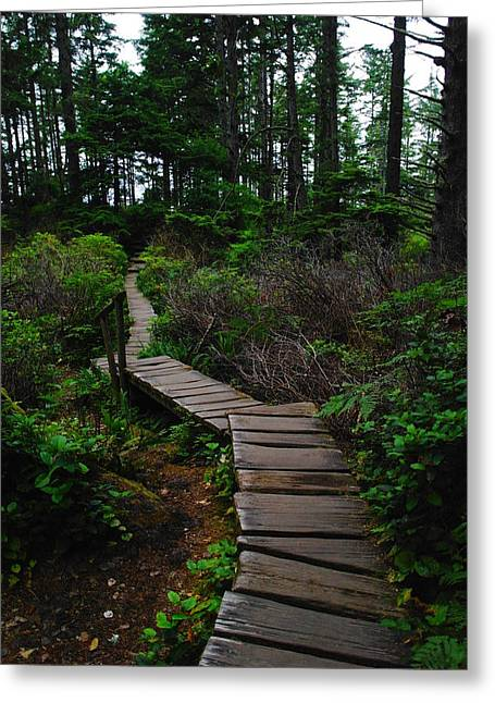 The Path To Cape Flattery Greeting Card by Jeff Swan