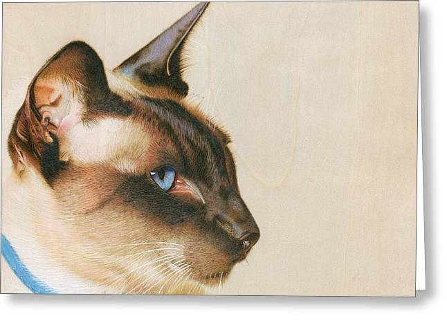 Cats Pyrography Greeting Cards - The Patriarch Greeting Card by Karen Hull