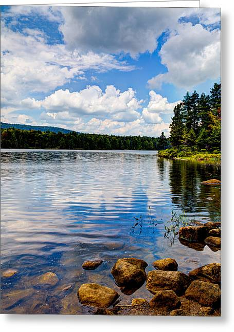 Lush Green Greeting Cards - The Peacefulness of Bubb Lake Greeting Card by David Patterson