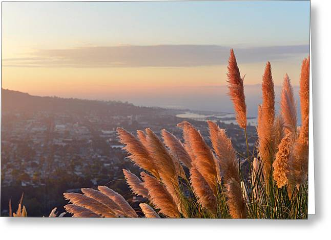 Lanscape Greeting Cards - The Perfect View Greeting Card by Mountain Dreams