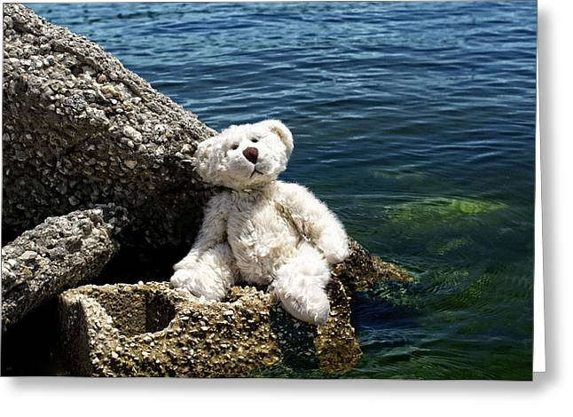 Swimmers Photographs Greeting Cards - The Philosopher - Teddy Bear Art By William Patrick and Sharon Cummings Greeting Card by Sharon Cummings