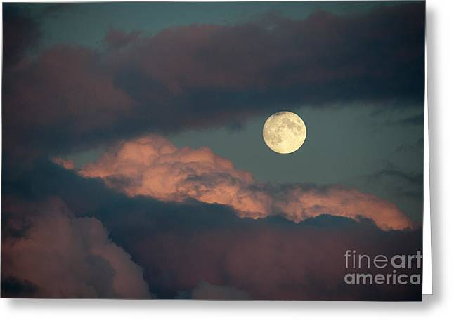 Eye Of Heaven Greeting Cards - The Photographers Eye Greeting Card by Wolf Kettler