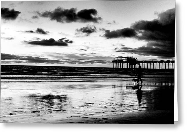 Sea Dog Prints Greeting Cards - The Pier Greeting Card by Juan Torrero