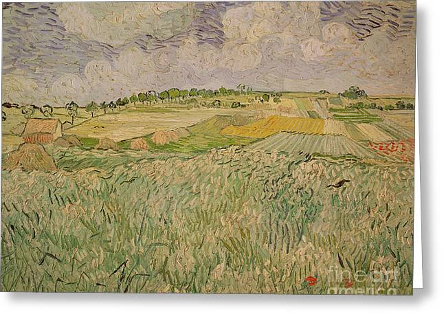 Vangogh Paintings Greeting Cards - The Plain at Auvers Greeting Card by Vincent Van Gogh