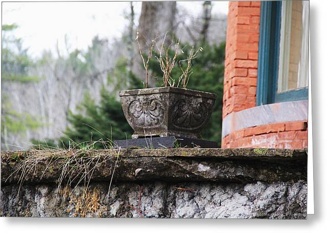 Stone Planter Greeting Cards - The Planter Greeting Card by Becca Brann