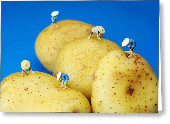 Creative People Greeting Cards - The Planting on potatoes little people on food Greeting Card by Paul Ge