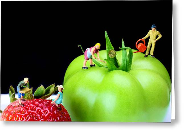 Creative People Greeting Cards - The planting tomato and strawberry little people on food Greeting Card by Paul Ge